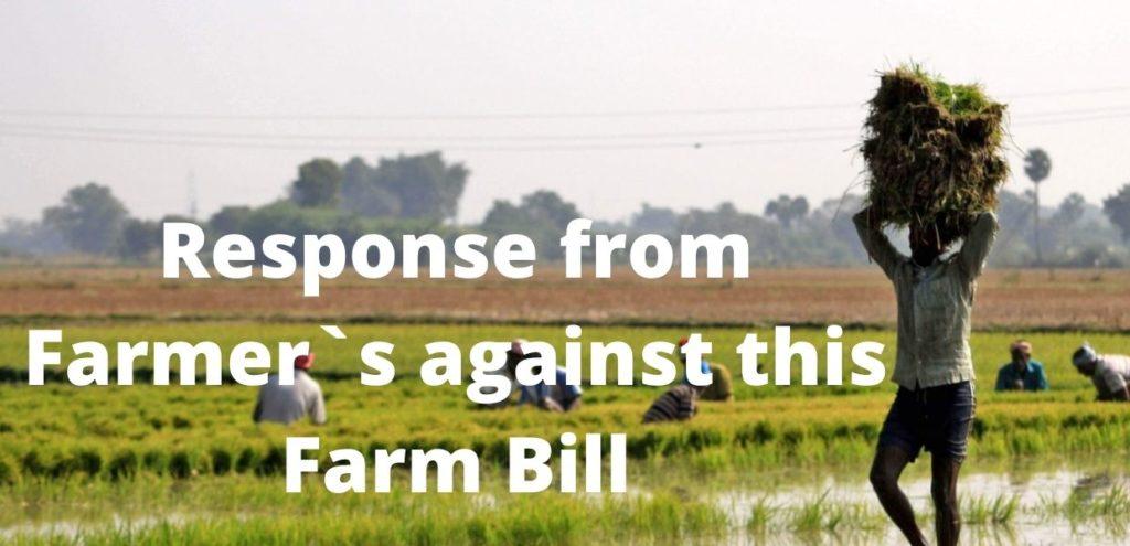 farmers working in farm carrying wheat